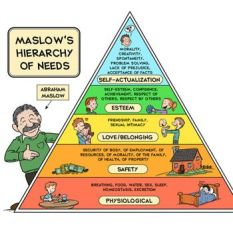 be1de090205b33e2b36535d44ae54895--maslows-hierarchy-of-needs-forensic-psychology